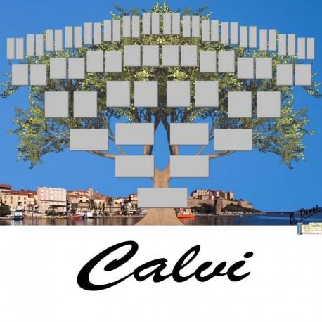 Présentation Calvi - Arbre ascendant vierge 6 générations