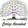 Présentation Corrèze - Arbres ascendants vierges 7 générations
