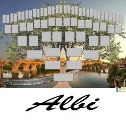 Présentation Albi