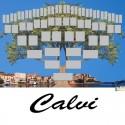Calvi - Arbre ascendant vierge 6 générations