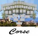 Corse - Arbre ascendant vierge 6 générations