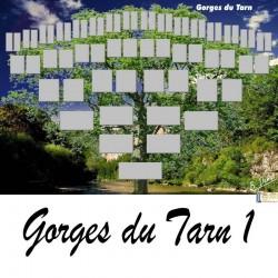 Présentation Gorges du Tarn 1- Arbre ascendant vierge 6 générations
