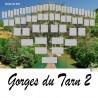 Présentation Gorges du Tarn 2 - Arbre ascendant vierge 6 générations
