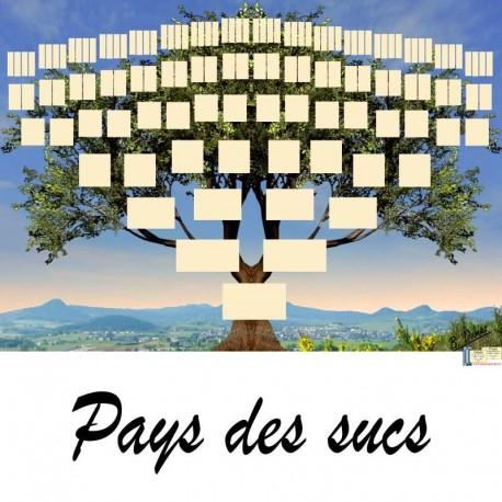 Présentation Pays des Sucs - Arbre ascendant vierge 7 générations
