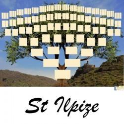St Ilpize - Arbre ascendant vierge 7 générations