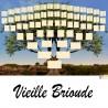 Présentation Vieille Brioude - Arbres ascendants vierges 7 générations