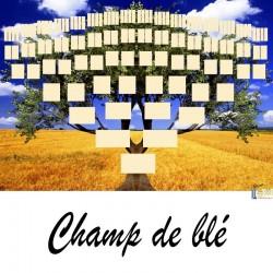 Présentation Champ-de Blé - Arbres ascendants vierges 7 générations