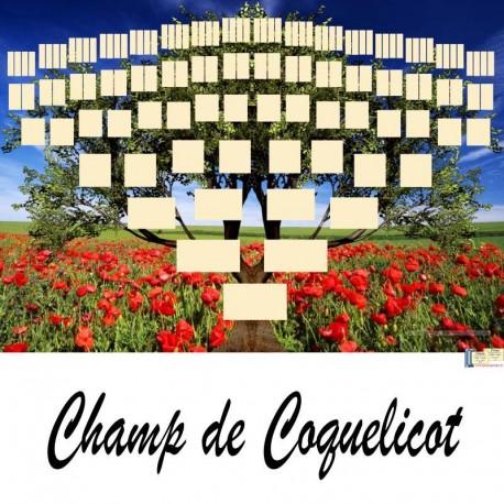Présentation Champ de Coquelicot - Arbres ascendants vierges 7 générations