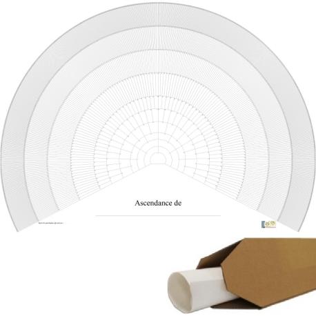 Ascendance 11 générations - arc de cercle vierge