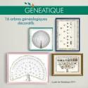 Pack de 16 arbres généalogiques décoratifs