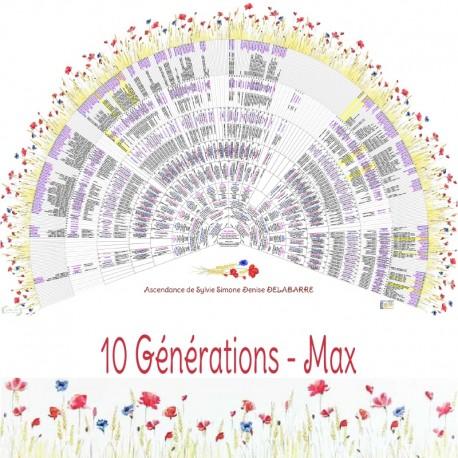 Prairie 10 générations Max